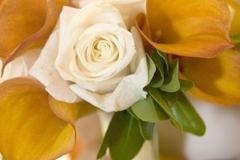 Web_Bouquet