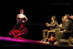 Flamenco09
