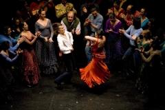 Web_flamenco4