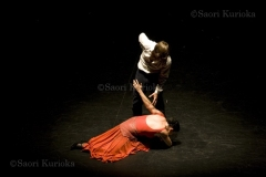 Web_flamenco5
